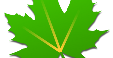 Greenify Donate Apk_v4.7.5_activatedapp.com
